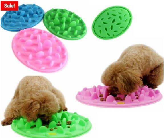 Cool Puppy Feeders You Should Buy Online