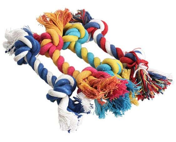 Cool Dog Toys You Should Buy For Your Puppy