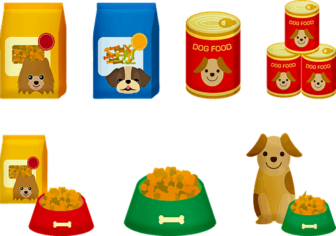 Best Food For A Puppy: Everything To Know