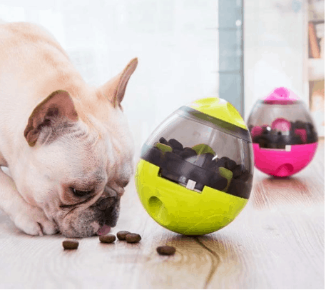 Some Chew Toys for Puppies That'll Save Your Shoes