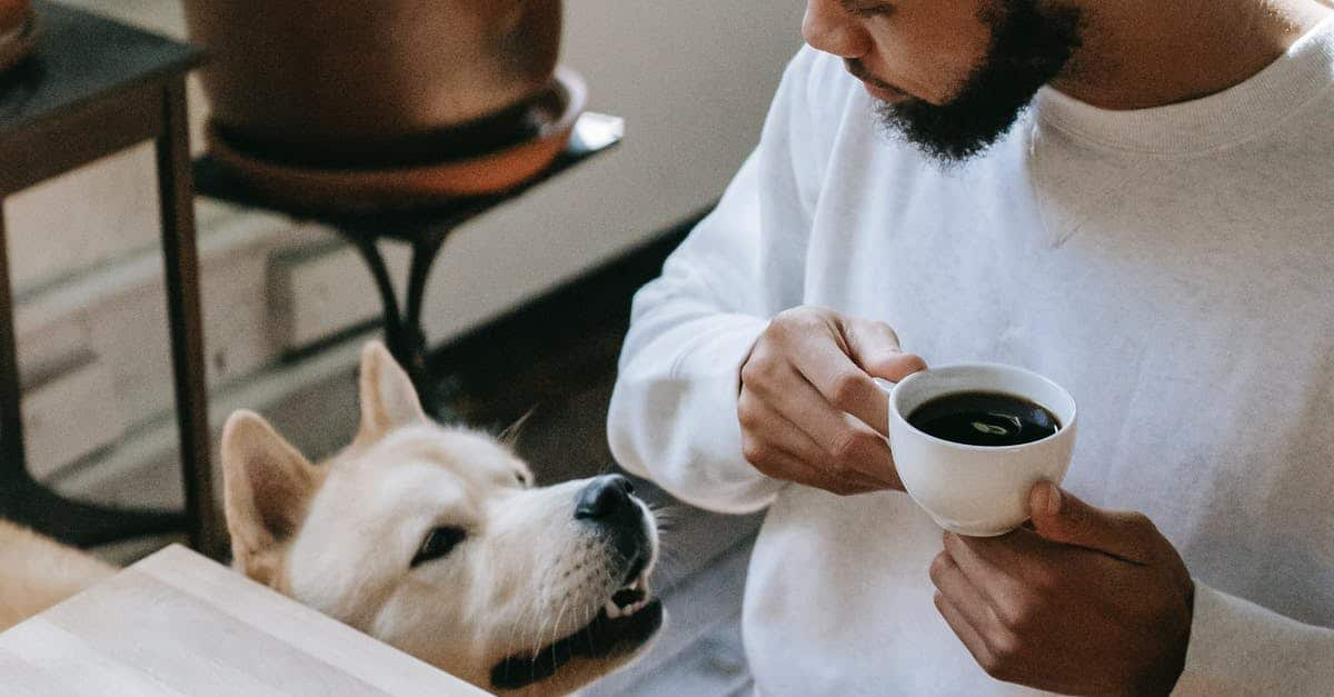 A dog sitting next to a cup of coffee